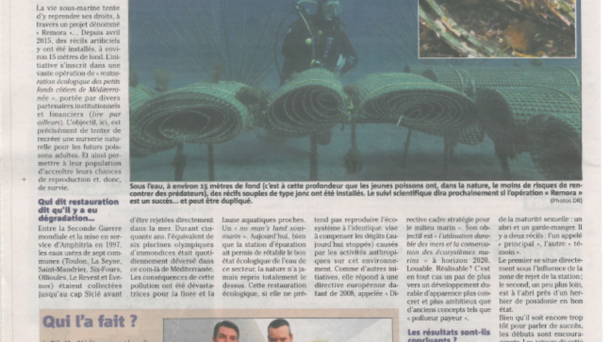 Article projet REMORA