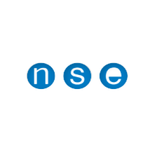 logo nse industry.png